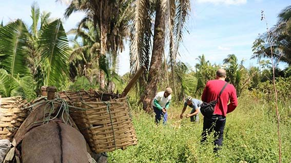 Women empowerment and access to land: the story of the COPPALJ